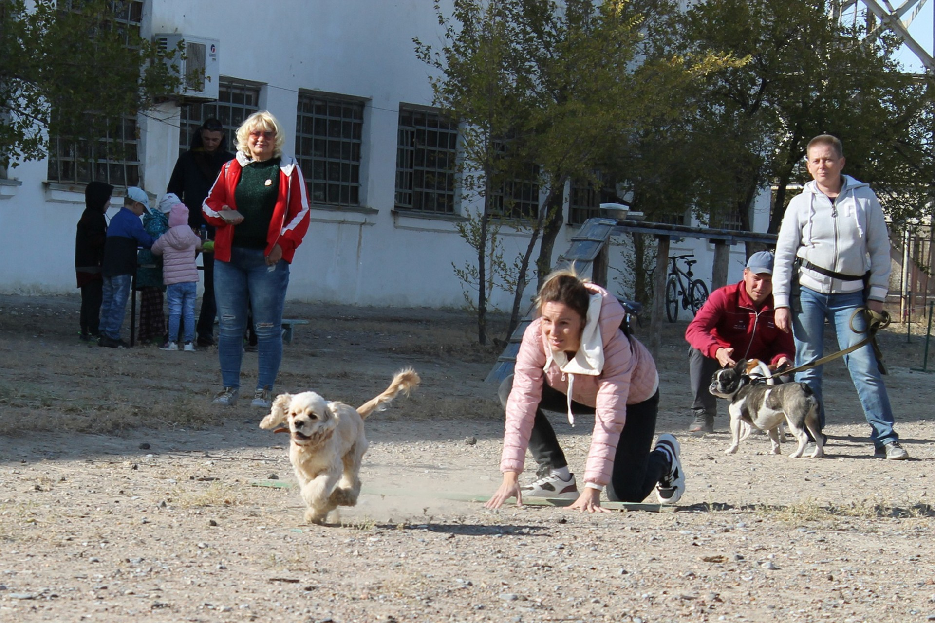 «Собачьи старты» - конкурс для любителей собак и их питомцев